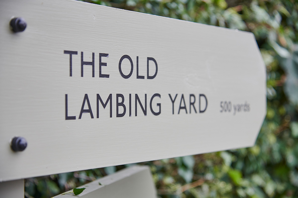 The Old Lambing Yard